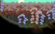 forest_3