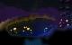 bioluminscreenshot