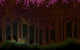 forest_biome_10